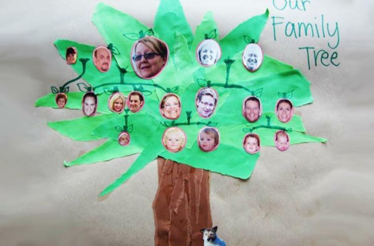 Faire un arbre généalogique