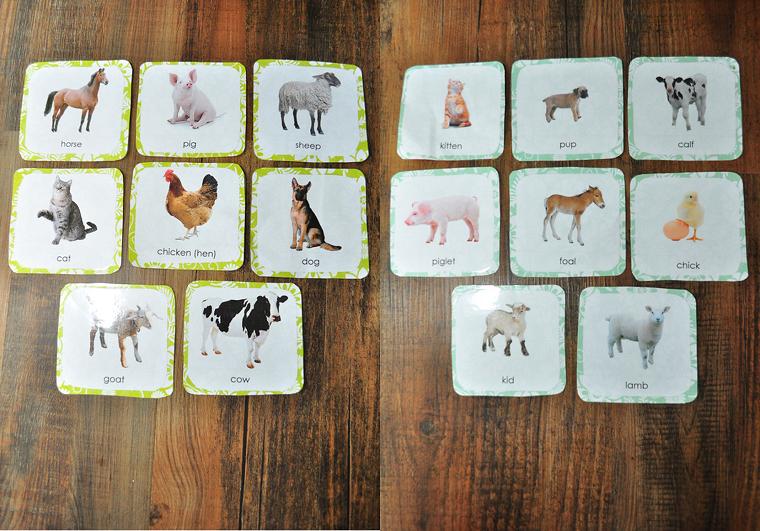 divertissement-pour-enfants-anniversaire-cartes-animaux