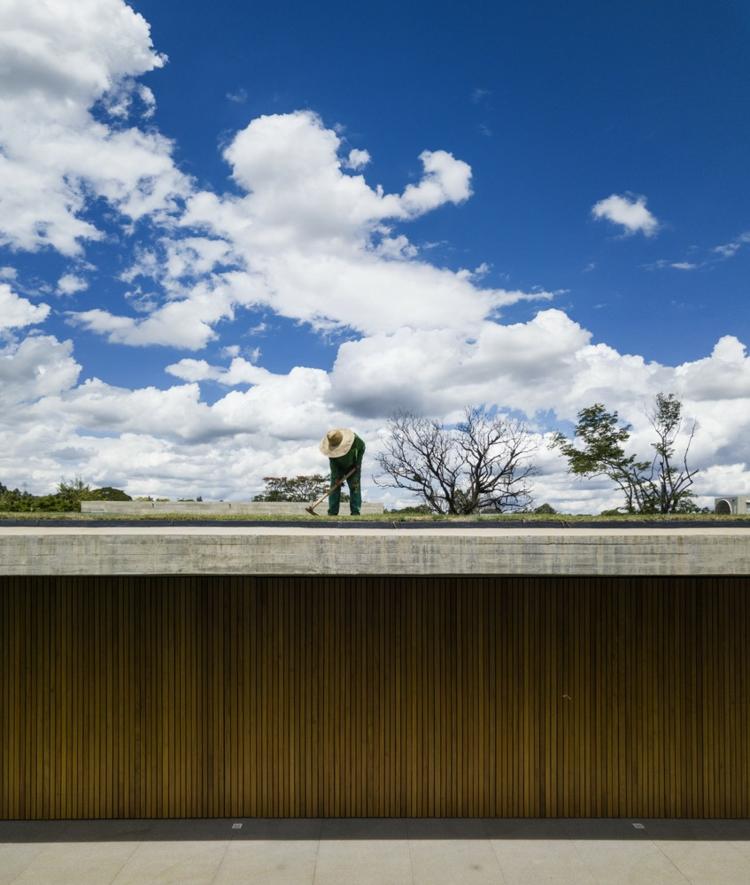 toit-cultivable-allongé-écologique
