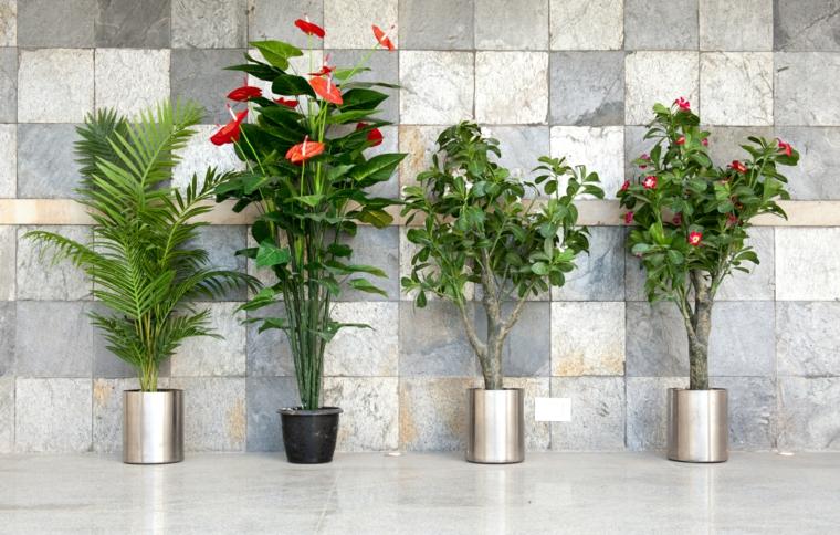 belles fleurs-interieur-maison-decoration