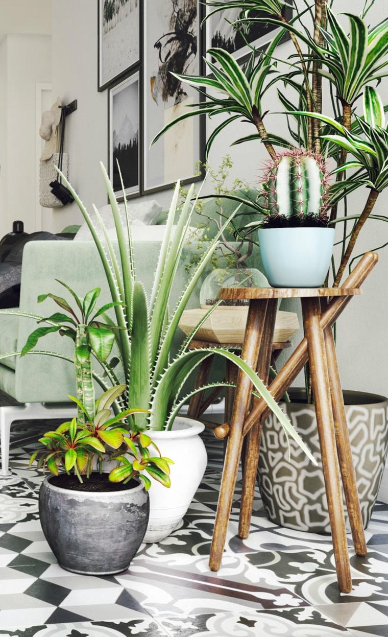 plantes-décorer-chambre-maison-options-originaux
