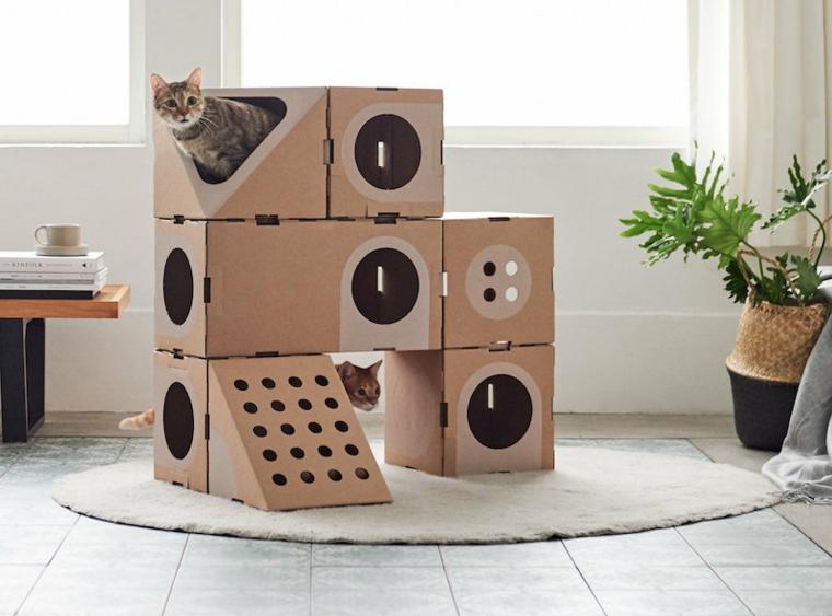 cartons-de-carton-pour-chats