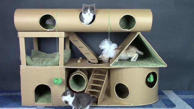 cartons-pour-chats