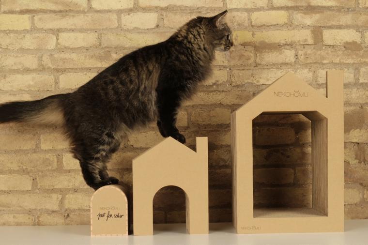 jeux pour chats en carton