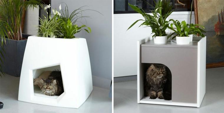 boîte à jeux pour chats