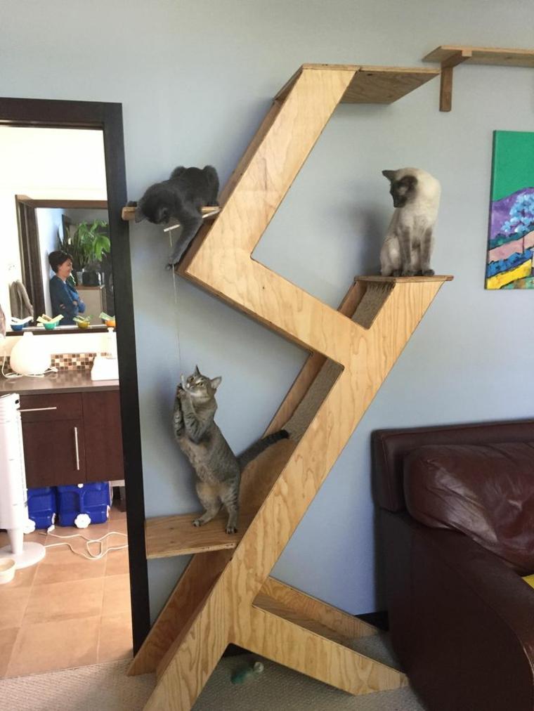 jeux-pour-arbre-chats