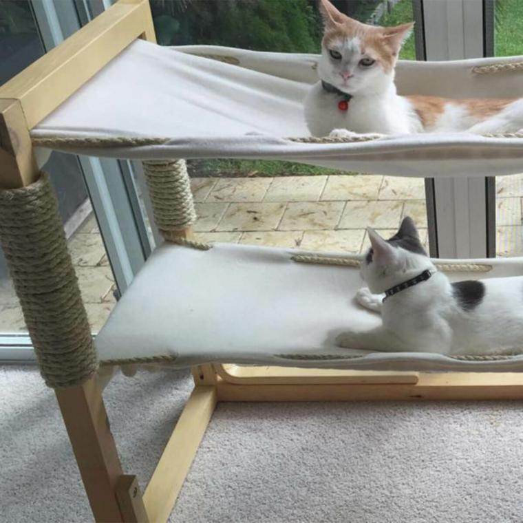 jeux pour hamacs de chats