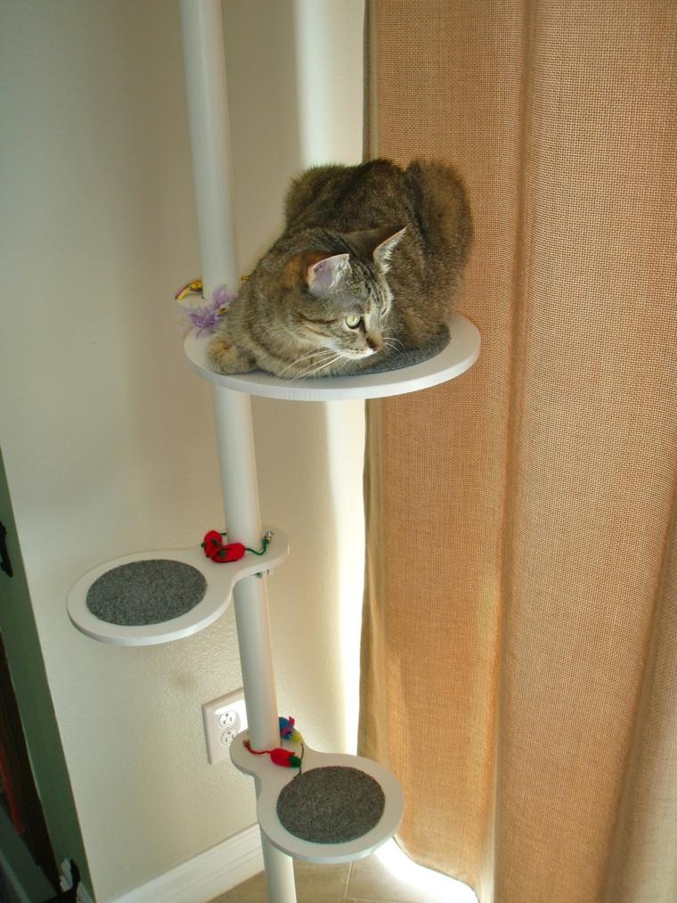 jeux pour chats verticaux