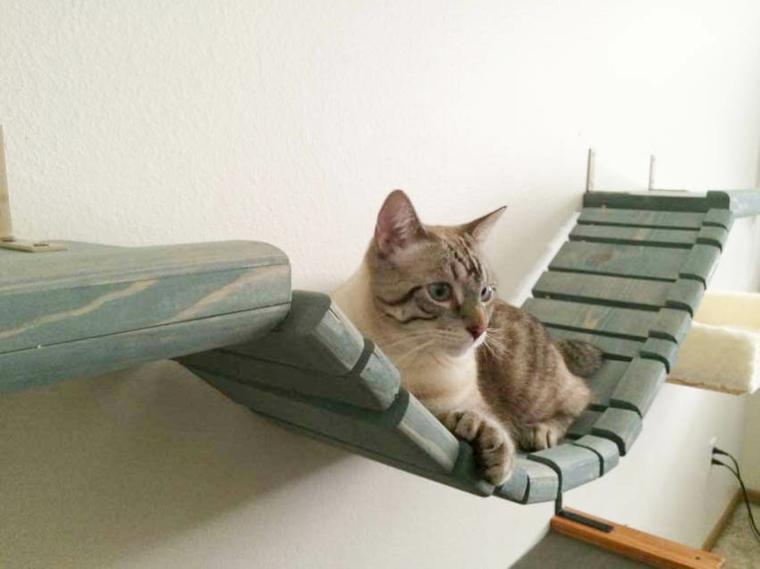 jeux pour bridge de chats