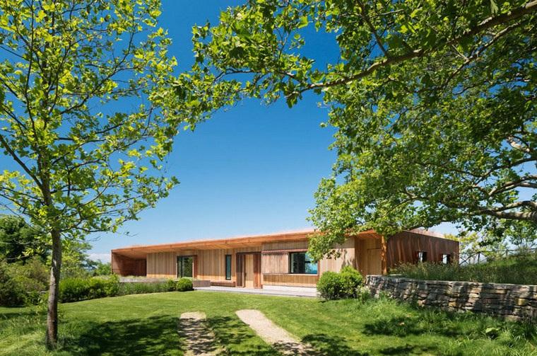 maison-moderne-conceptions-jardin-options