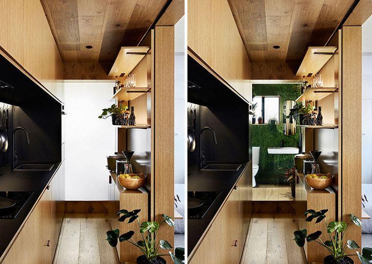 plantes-décoratif-espace-moderne