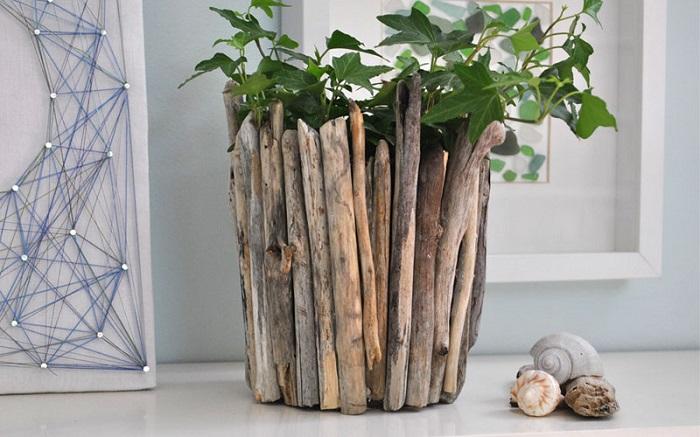 plantes de pots de fleurs en bois flotté