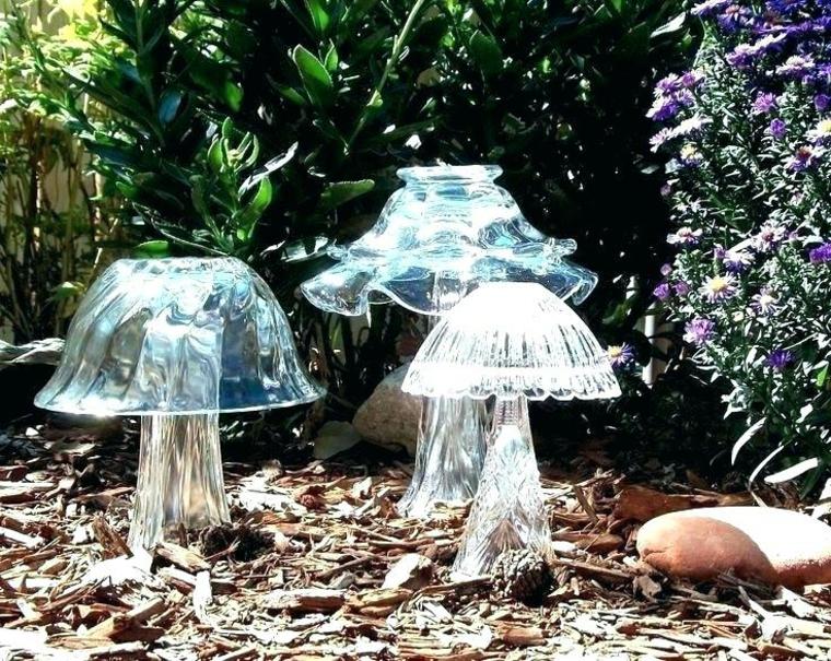 Champignons et champignons