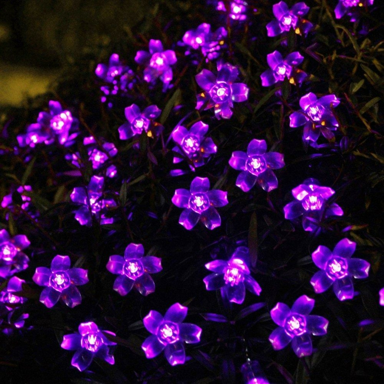 lumières de fleurs