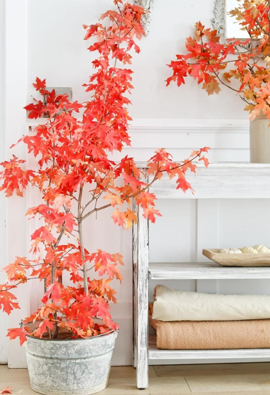 feuilles dautomne pour décorer des pots