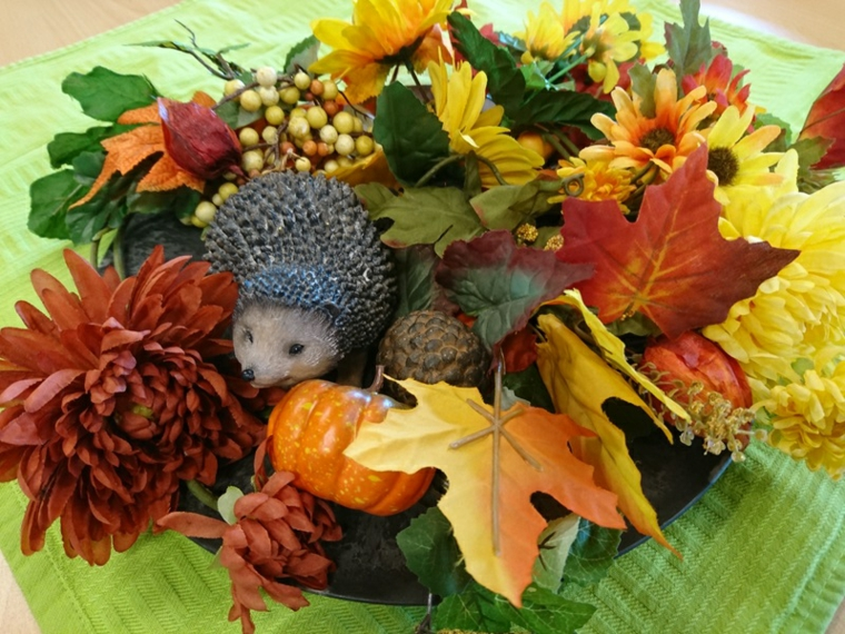 automne-feuilles-sec décoration