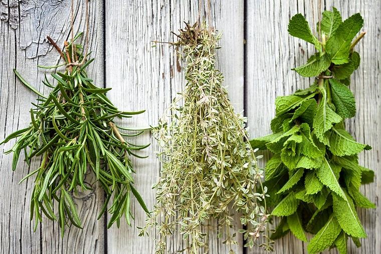 herbes-os-idées-santé-bien-être