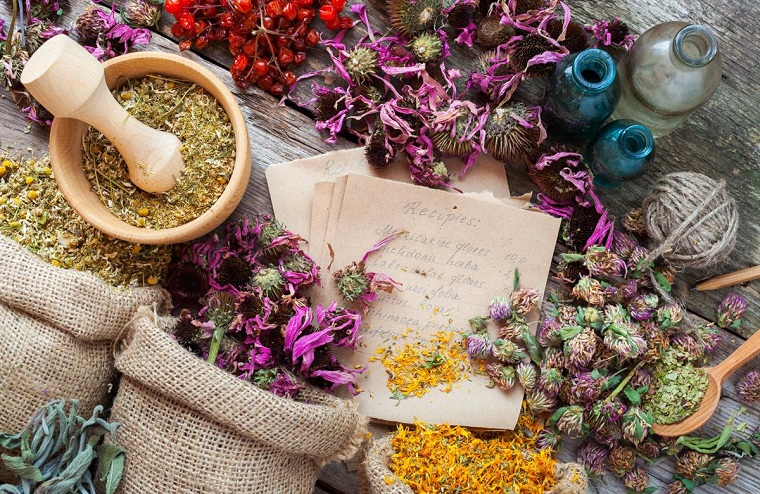 herbes médicinales-idées-conseils-santé