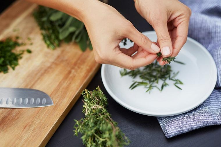 herbes médicinales-conseils santé