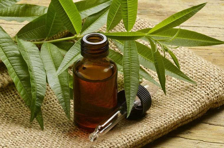 herbes-options-santé-idées