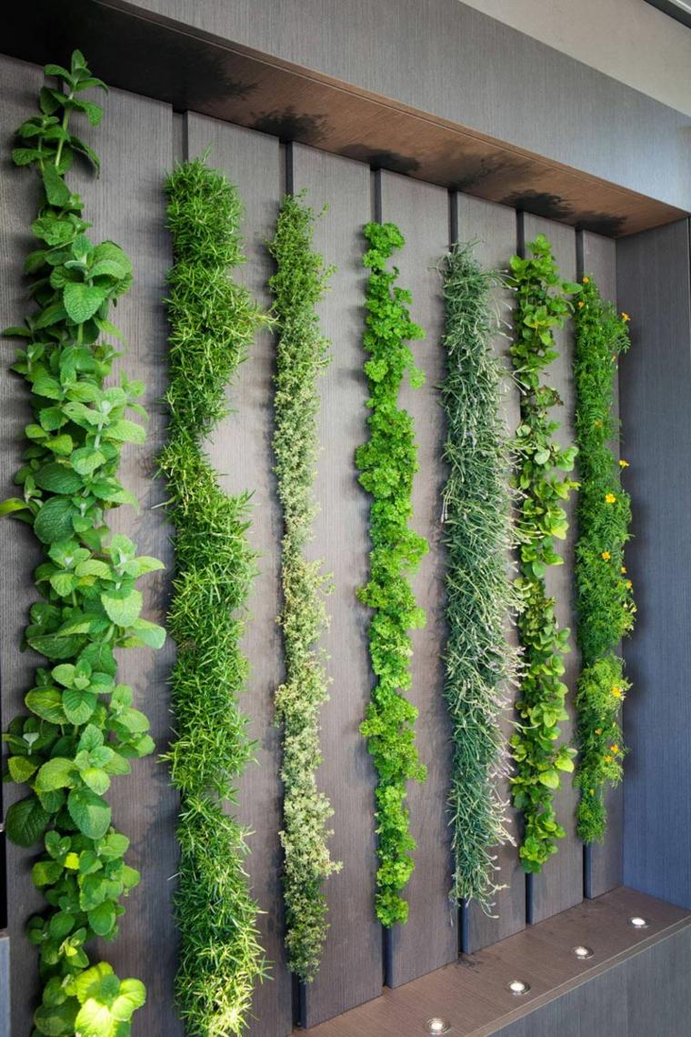 mur des plantes