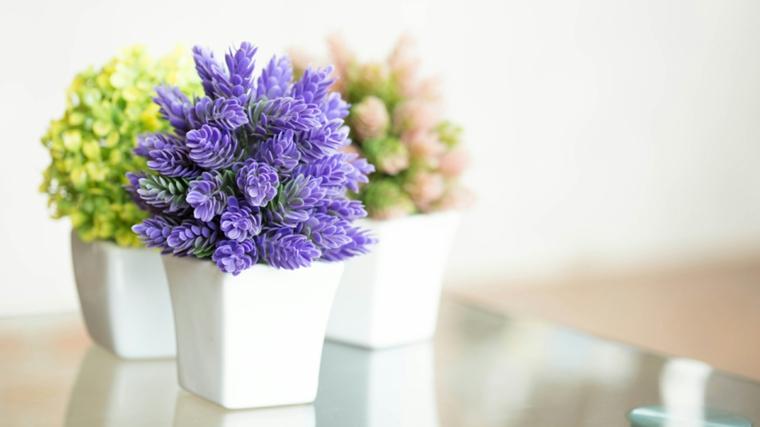 les fleurs-soins-vacances