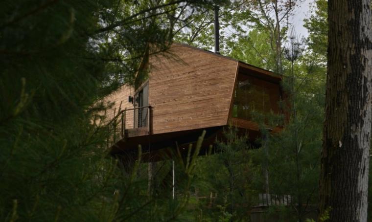 maison dans les pins