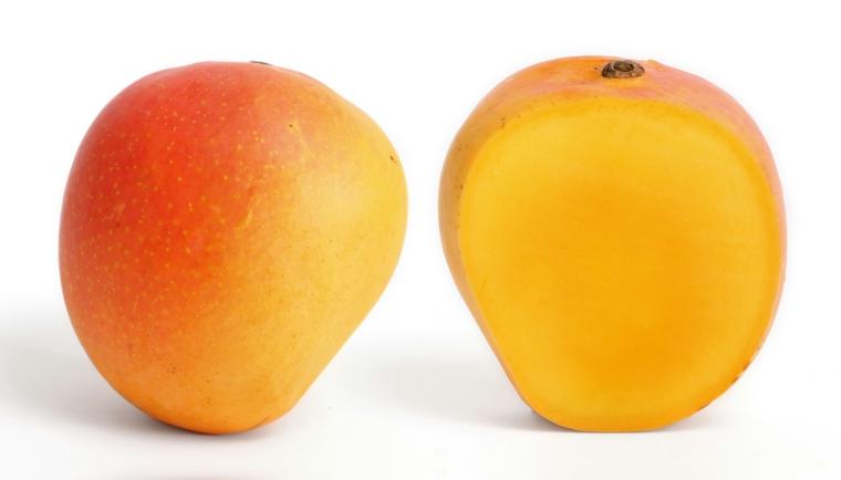 prestations de mangue