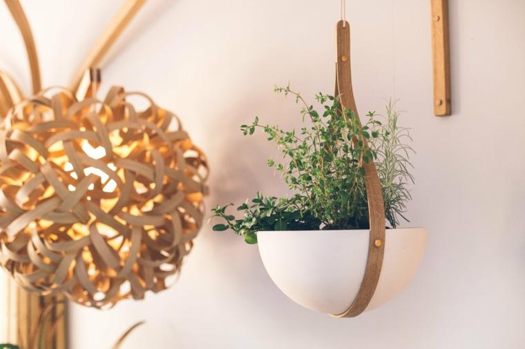 lampes-de-contraste-plantes-petites