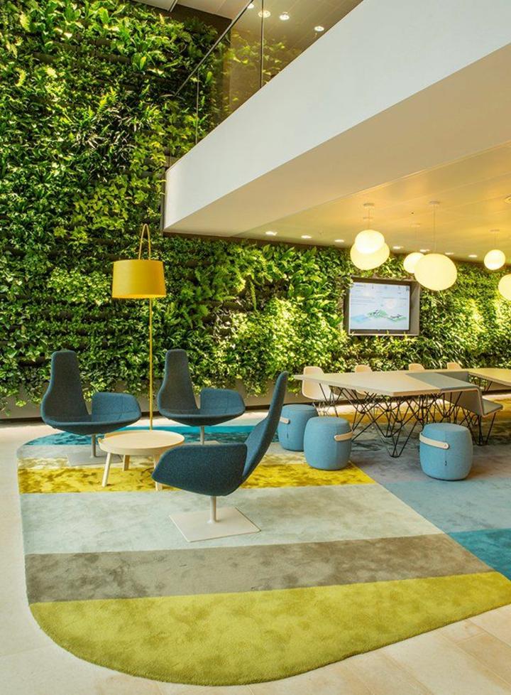 contrastes-couleurs-plantes-tapis