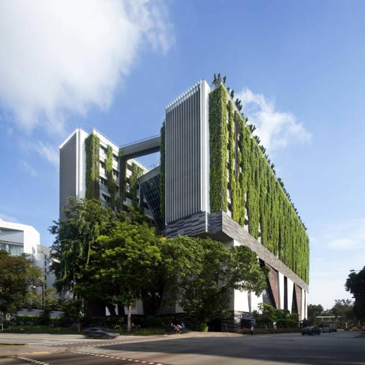 immeuble-extérieur-vert-moderne