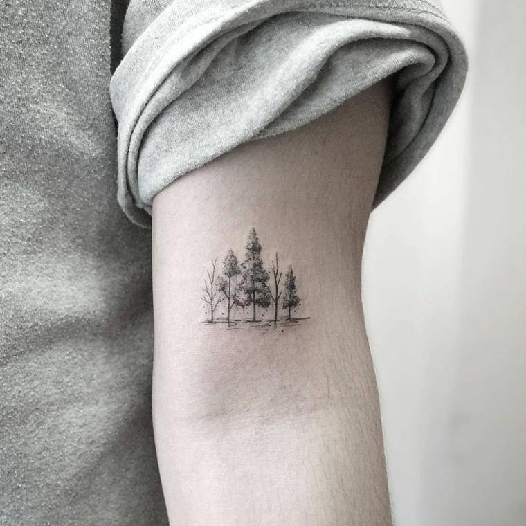 Forêt ou arbres