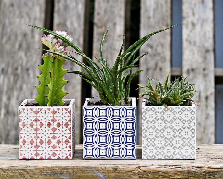 plantes succulentes-plantes-options-idées