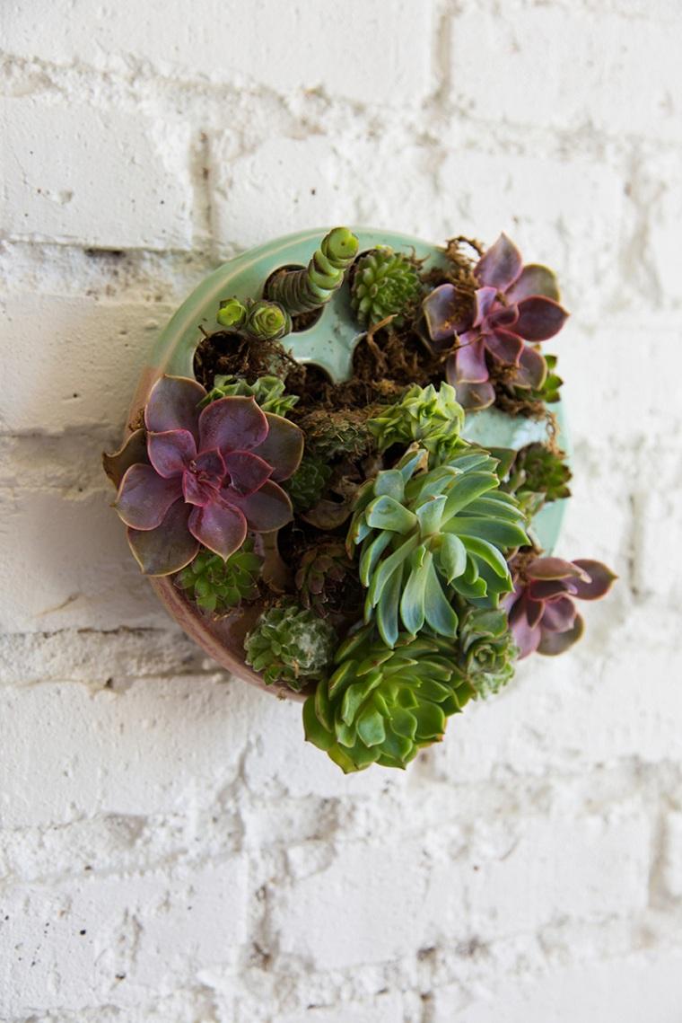 plantes succulentes-plantes-idées-murales-originales