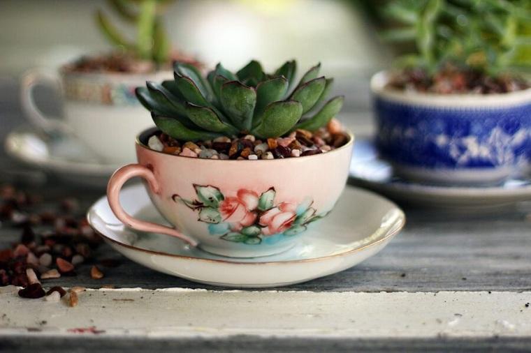succulentes-plantes-decorer-tasses-cafe