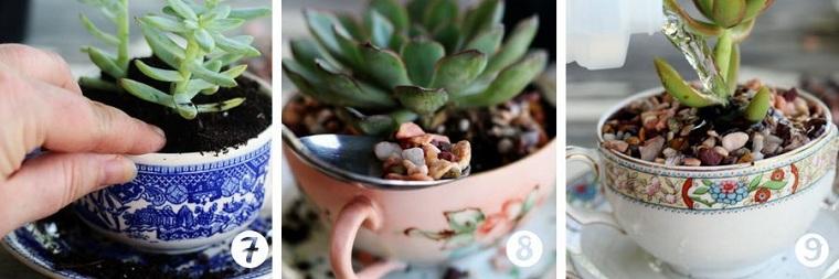 tasses-café-succulentes-tutoriel-trois