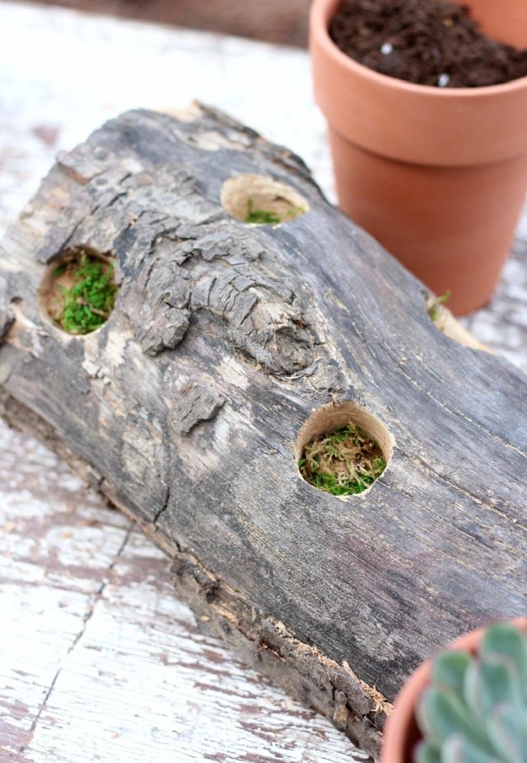plantes succulentes-idees-projets-decoration-style-exterieur