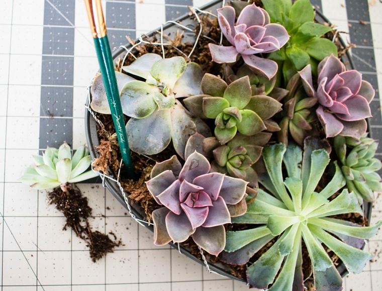 plantes succulentes-plantes-pot-forme-coeur-idees-decorer-maison-style