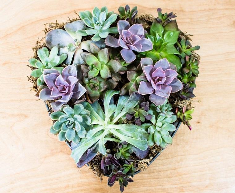plantes succulentes-plantes-pot-en forme de coeur-idées-décorer-maison-style-naturel