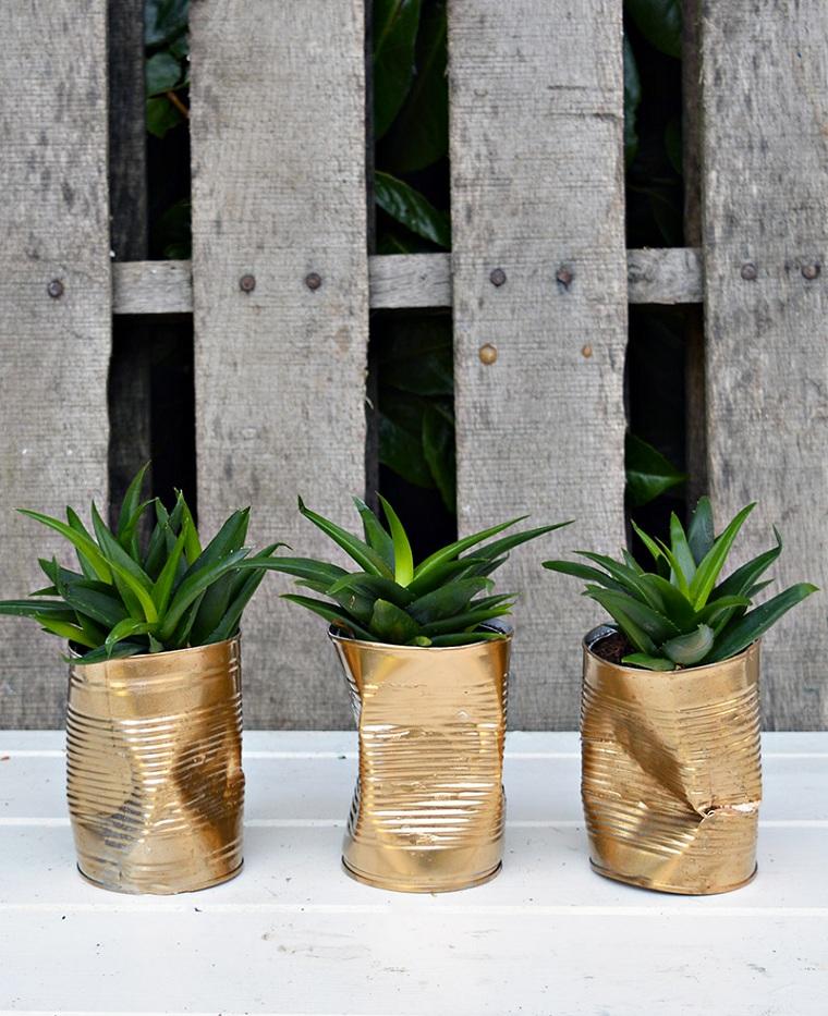 canettes peintes de plantes succulentes