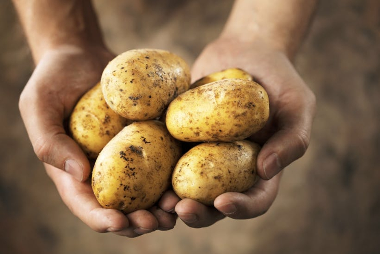 recettes de pommes de terre végétaliennes