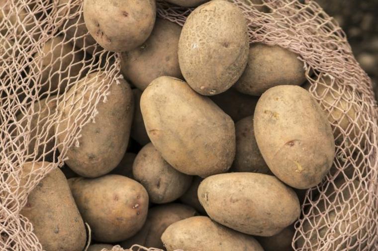 Données nutritionnelles de la pomme de terre