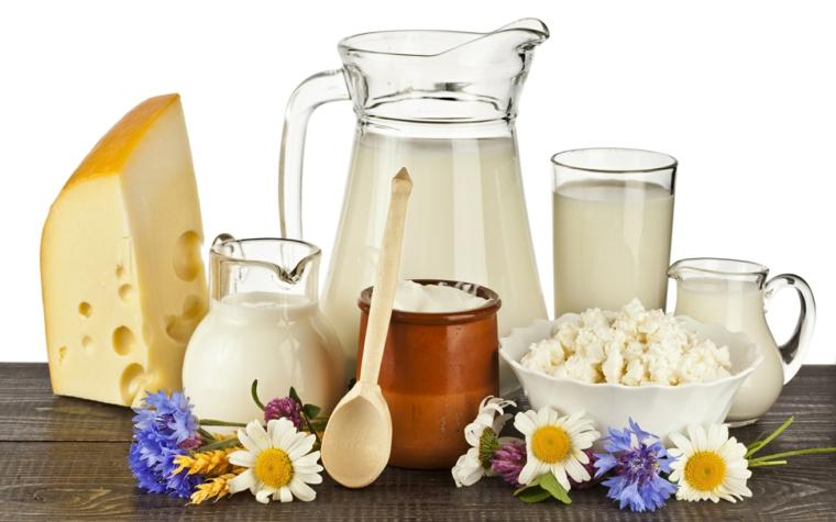 aliments non nutritifs - produits laitiers