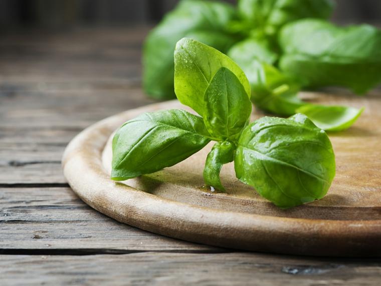 feuilles de basilic-avantages