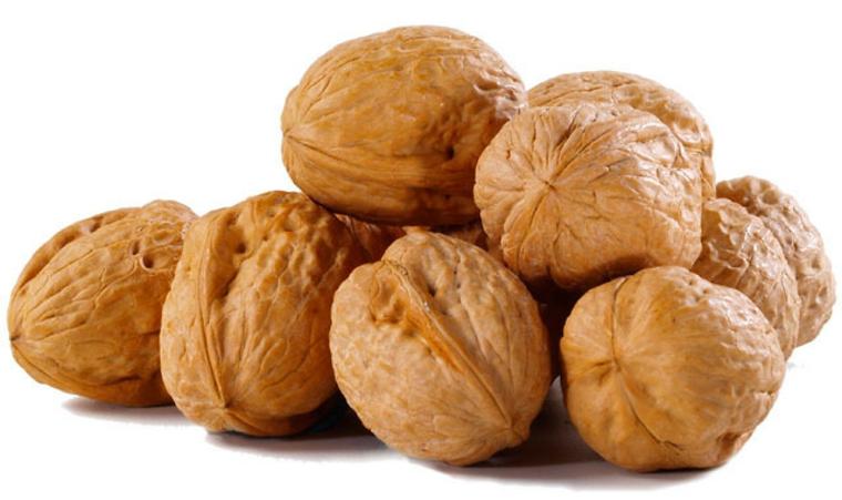 noix et fruits secs