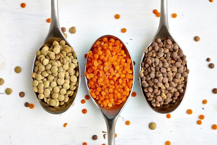recette lentilles-options-types-originaux