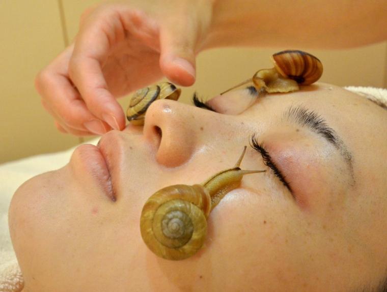 traitement aux escargots