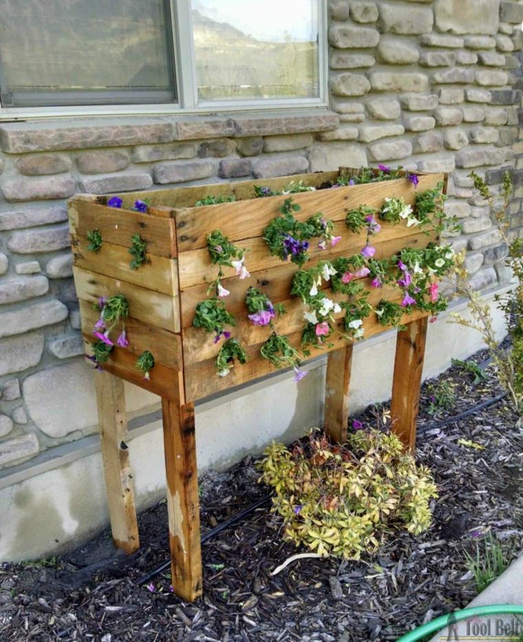 Un lieu idéal pour vos plantes